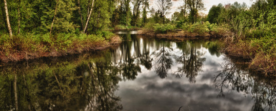 Learn how to do HDR photography