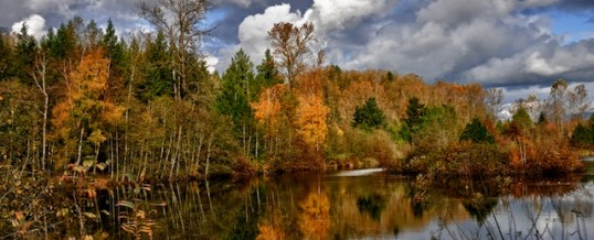 Outdoor Photography Fall Colors Workshop Fraser Valley
