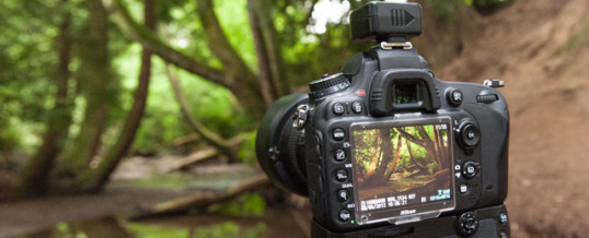 Outdoor photography workshop July