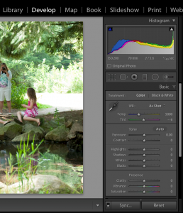 Lightroom Develop Module and Auto Synch off
