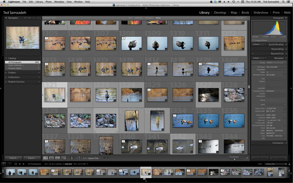 In Lightroom Library find the images to add Geo-tag