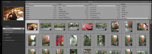How to use Lightroom Quick Collection for temporarily projects