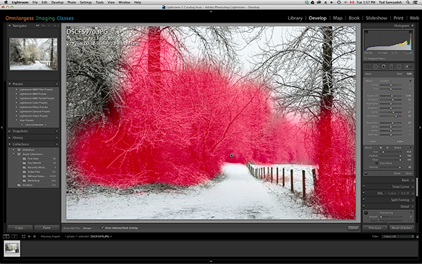 Adding Lightroom Local Adjustment by using the Brush Tool