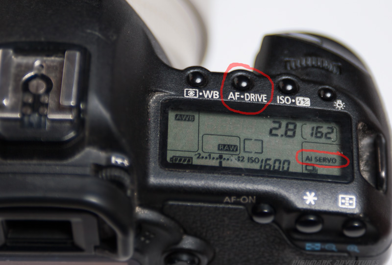 AI Servo Mode in Canon cameras