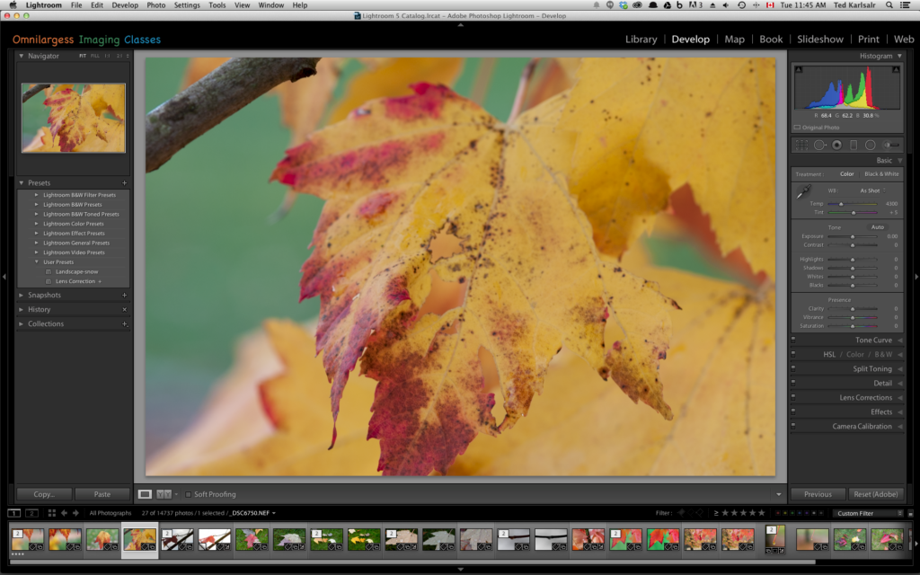 To Create prestes in Lightroom just follow these easy steps