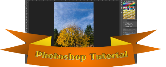 Photoshop Crop Tool