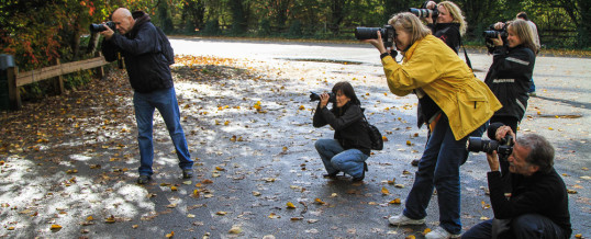 Vancouver Digital Camera workshop for beginners