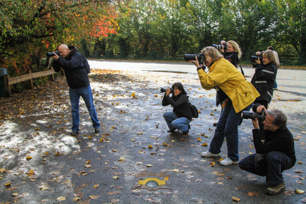Fall outdoor photography class