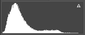 Histogram shows that the majority of pixels are in dark grey tones