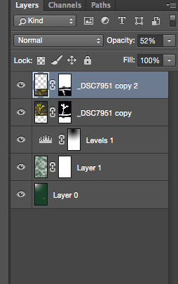 Photoshop Layers can change the look of an image non-destructively