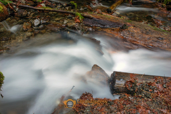 Slow Shutter speed using tripod