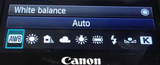 Auto White Balance Vs Presets