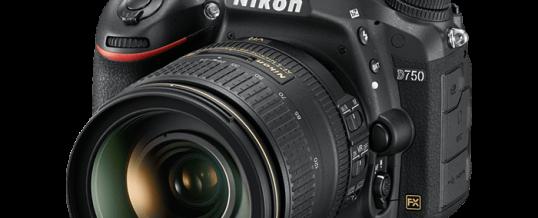 Digital Camera Workshop for beginners