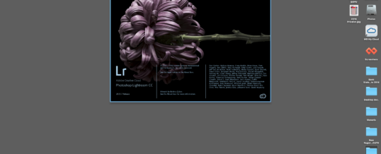 Lightroom Library Module Workshop