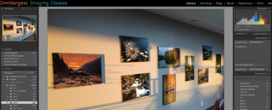 Lightroom as an Assistant
