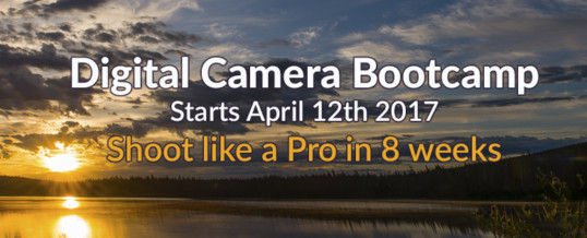 Beginners Digital Camera Bootcamp April 2017