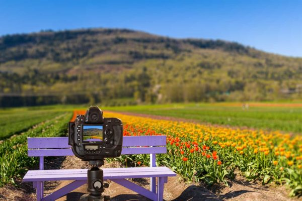 Digital Photography Class for beginners