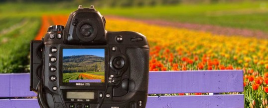 Complete Photography Class – Digital Camera Bootcamp Program