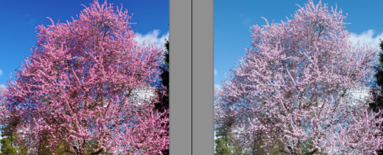 Polarizing Filter – Digital Photography