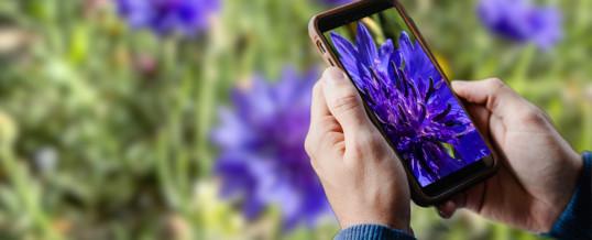 Free Smartphone Photography Workshop