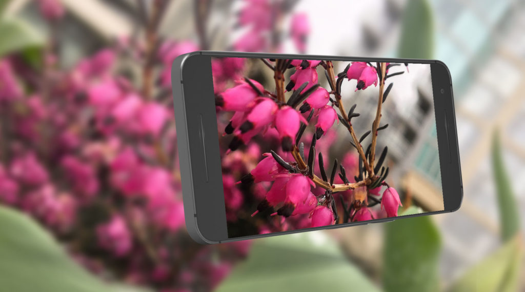 Take your smartphone photography skills to the next level.