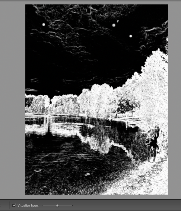 After activating the Visualize Dust, the photo turns in to negative black and white image.
