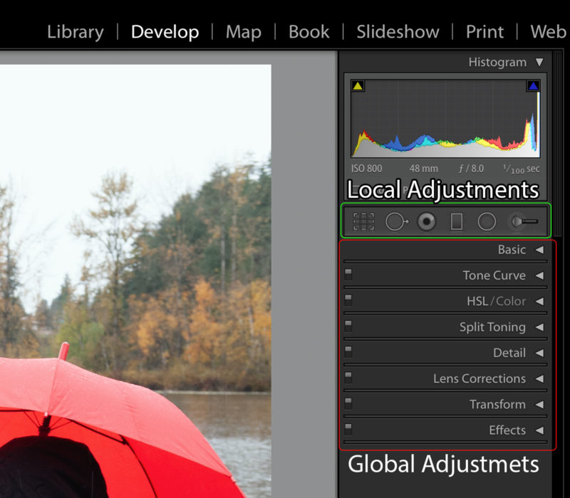 Lightroom Develop Tabs divided to the Local and the Global Adjustments.