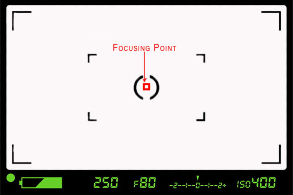 Focusing point indicates where the camera is set to focus.