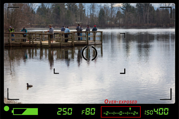 Using viewfinder information