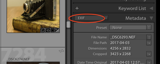 EXIF Data in Photo Editing