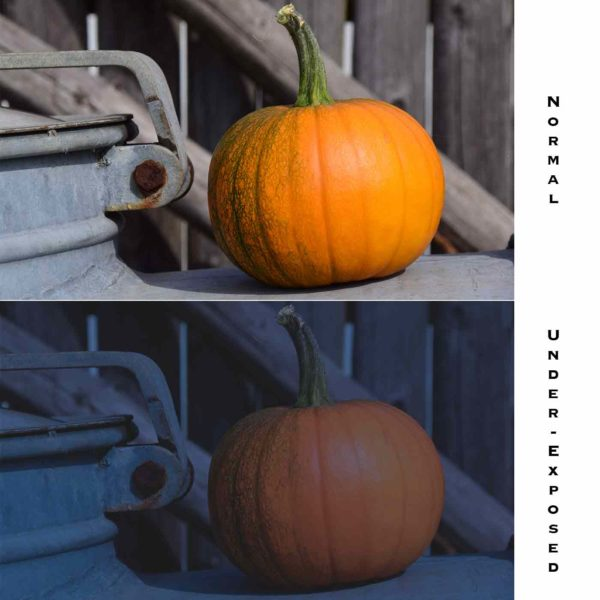 Halloween Photography Tip