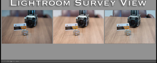 LIGHTROOM SURVEY VIEW