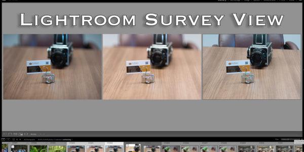 Lightroom Survey view